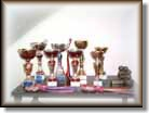 Boroka's Grand Amity trophies